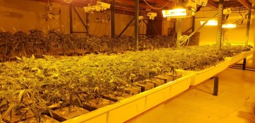 Illegal Marijuana Grow Discovered in Industrial Palm Springs; Two Arrested