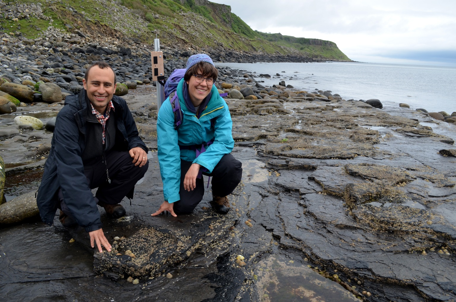 Footprints reveal that stegosaurs once stepped across Scotland