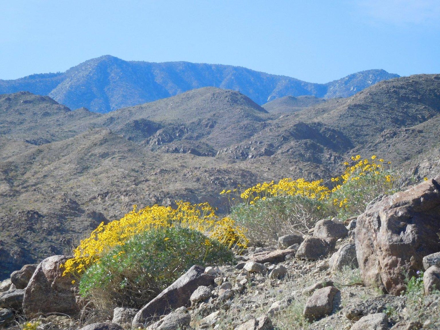 Fun, lesser-known hiking trails around the Coachella Valley