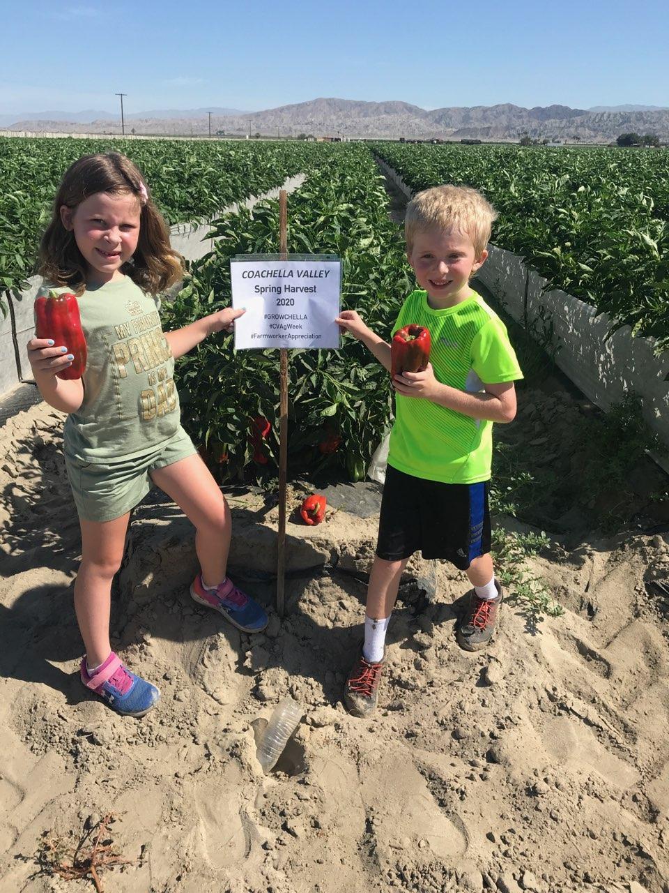 Coachella Valley Agriculture Week Kicks Off
