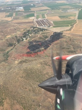Blaze Burns 20 Acres North of San Jacinto