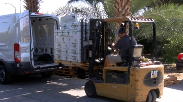 Locals Team Up To Create Produce Box Delivery Service: 'CV Harvest Box'