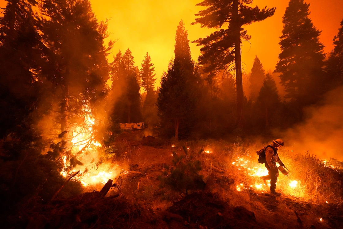 Eight National Forests closed due to high fire danger