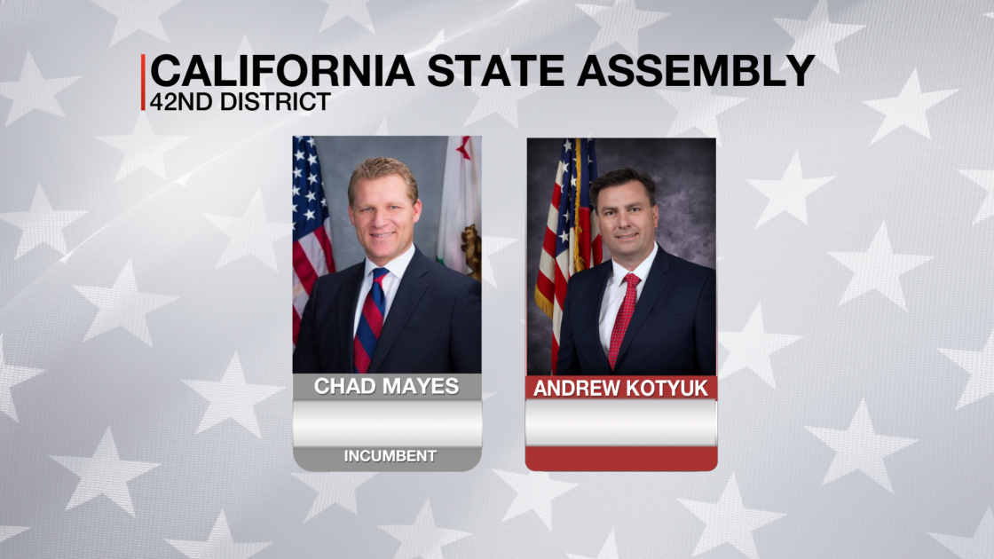 California State Assembly, 42nd District Election Results
