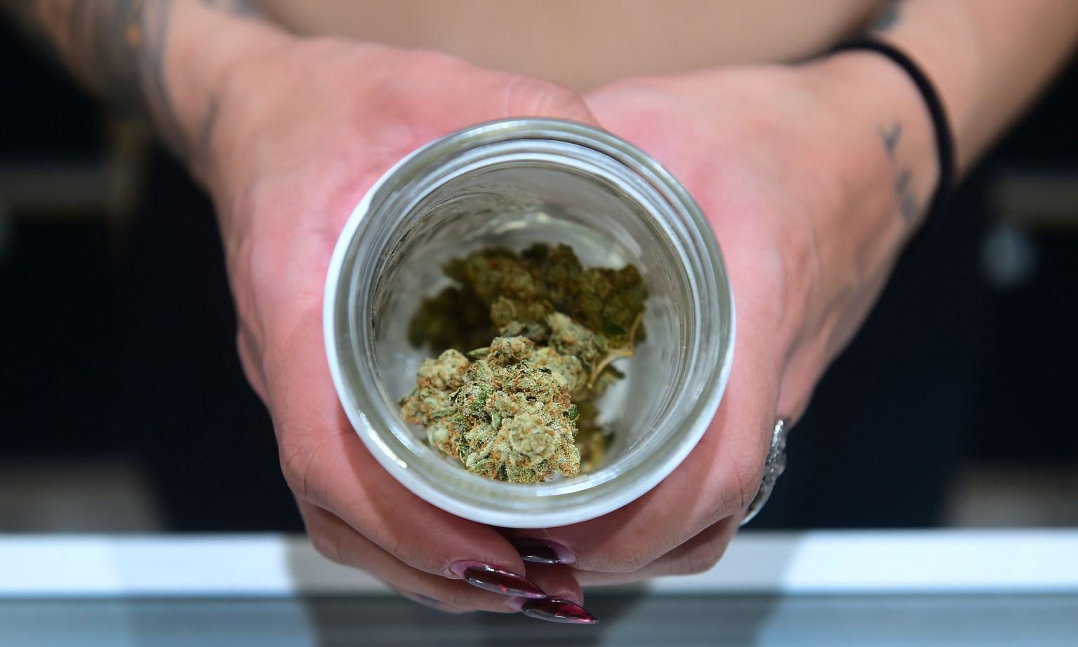 Montana, Arizona, New Jersey and South Dakota approve marijuana ballot measures
