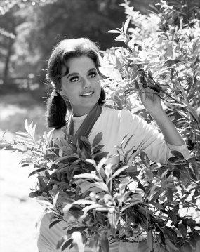 Dawn Wells, Mary Ann on 'Gilligan's Island,' dies at age 82