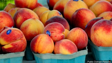 New Farmers Market Kicks Off Thursday in Indian Wells