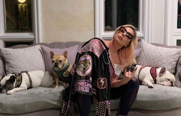 Lady Gaga's Dog Walker Recovers From Shooting, Shares Details From Ordeal