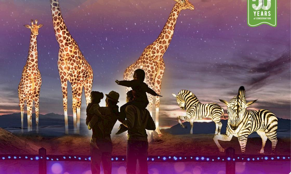 WildLights Returning to Living Desert Zoo and Gardens