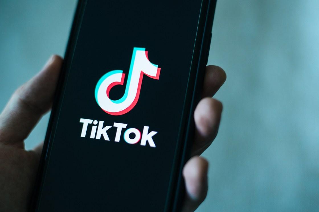 Biden administration seeks a pause on TikTok court fight