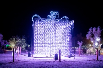 'WildLights' Returns to Living Desert Zoo and Gardens; Tickets Still Available