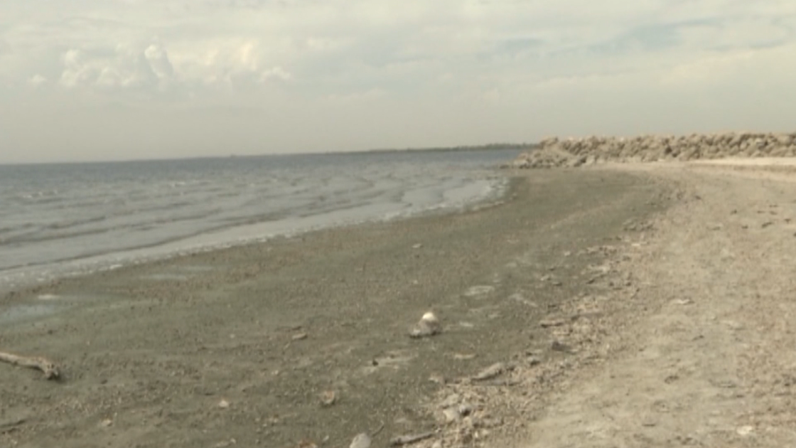 Toxic algae outbreak prompts advisory at Salton Sea
