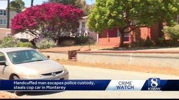 Handcuffed man escapes police custody, steals cop car