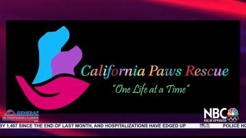 NBCare Silver Linings: California Paws Rescue