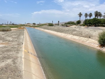 Dead body found floating in Indio canal
