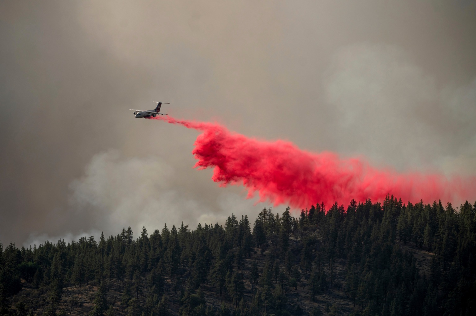 CA wildfires scorched 3x more land in 2021 than same period of time in 2020