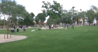 Palm Springs Dog Park Renamed in Former City Manager's Honor