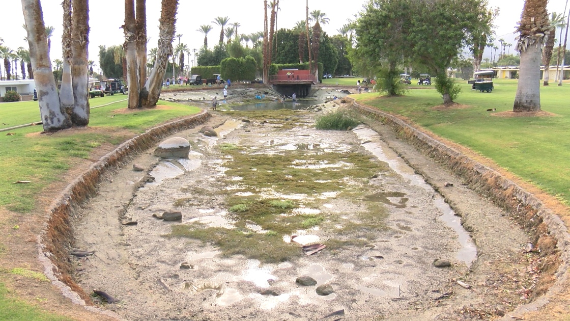 Shadow Mountain Golf Club Restoration Underway; Fish In Need Of New Home