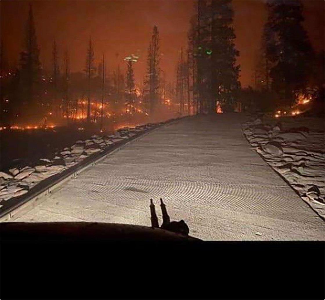 Miles de personas evacuadas por gran incendio forestal en California
