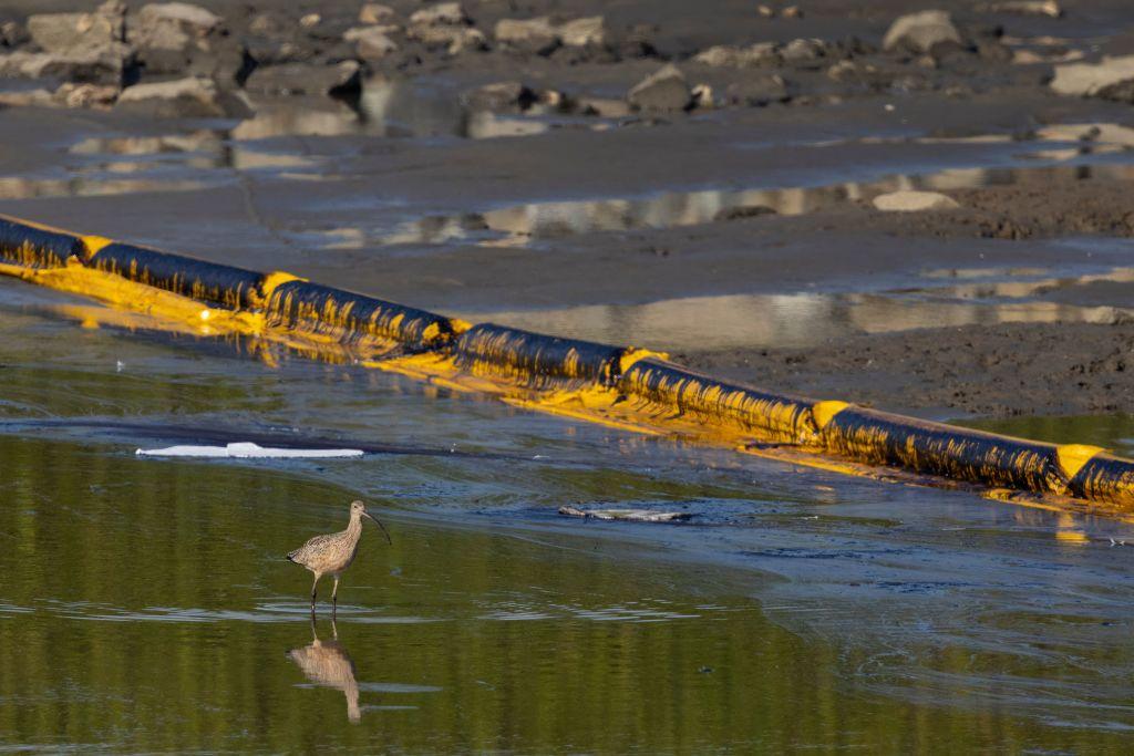 Derrame de más de 3 mil barriles de petróleo daña costa del sur de California
